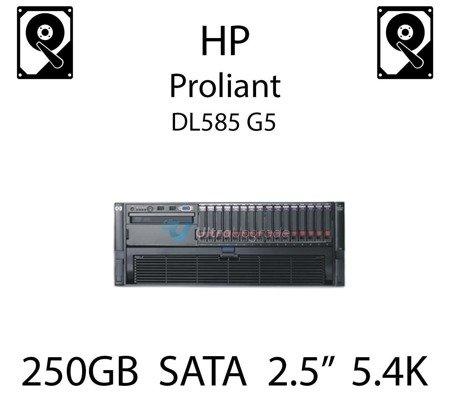 """250GB 2.5"""" dedykowany dysk serwerowy SATA do serwera HP ProLiant DL585 G5, HDD Enterprise 5.4k, 3GB/s - 460355-B21   (REF)"""