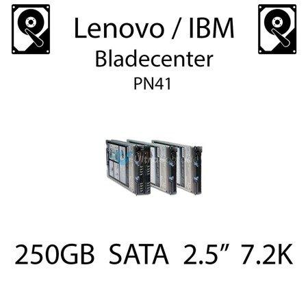 """250GB 2.5"""" dedykowany dysk serwerowy SATA do serwera Lenovo / IBM Bladecenter PN41, HDD Enterprise 7.2k, 600MB/s - 81Y9722"""