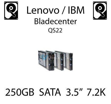 "250GB 3.5"" dedykowany dysk serwerowy SATA do serwera Lenovo / IBM Bladecenter QS22, HDD Enterprise 7.2k, 300MB/s - 39M4526"