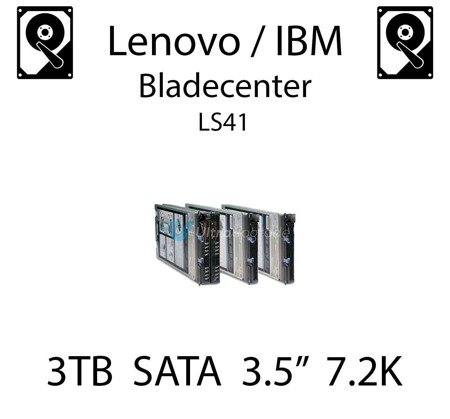 """3TB 3.5"""" dedykowany dysk serwerowy SATA do serwera Lenovo / IBM Bladecenter LS41, HDD Enterprise 7.2k, 300MB/s - 81Y9774"""